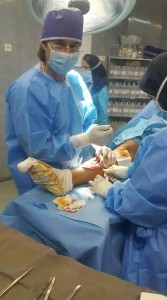 Dr mehrdad Darvish